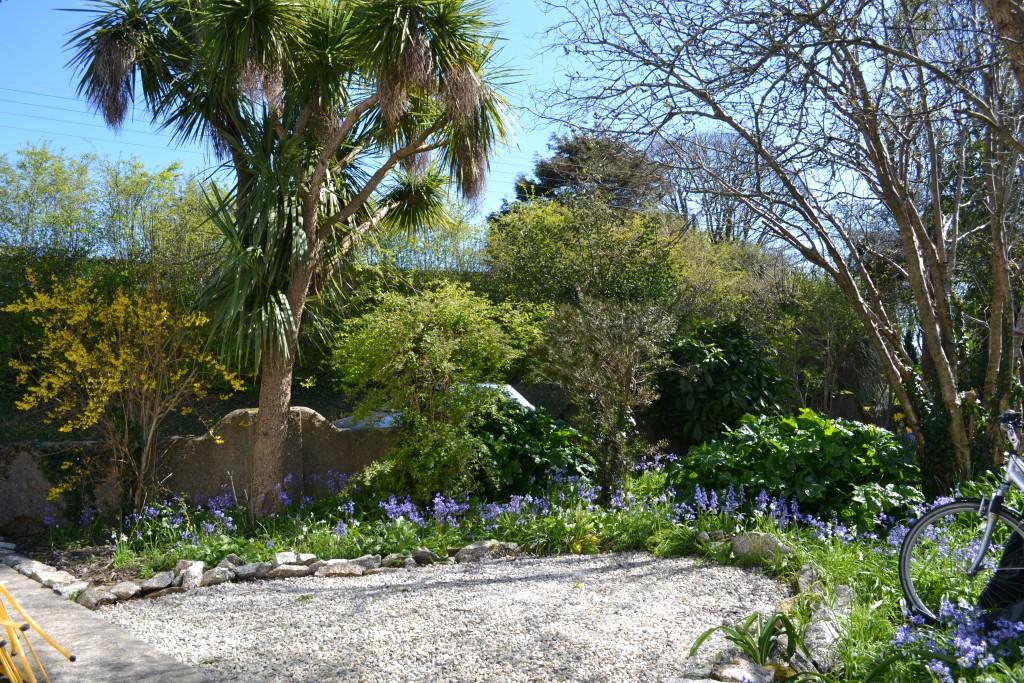 Pretty Cornish garden
